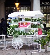 chanel-flowershop