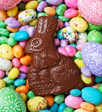 opener_bunny