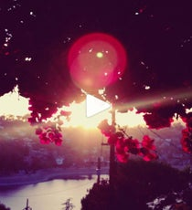 instagram-video