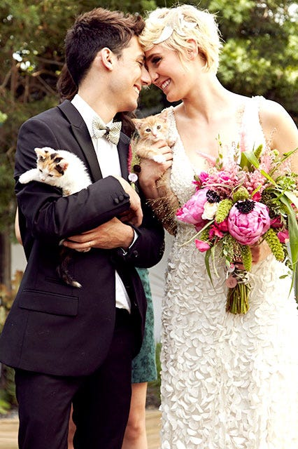 Cat wedding kittens ceremony photos cute la breaking a bunch of kittens attended a wedding junglespirit Choice Image