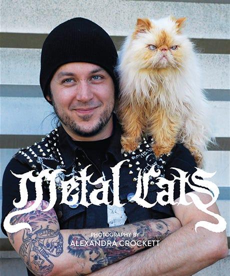metalcatsopener