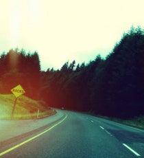 road-trip-op