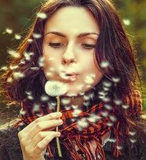 allergy opener