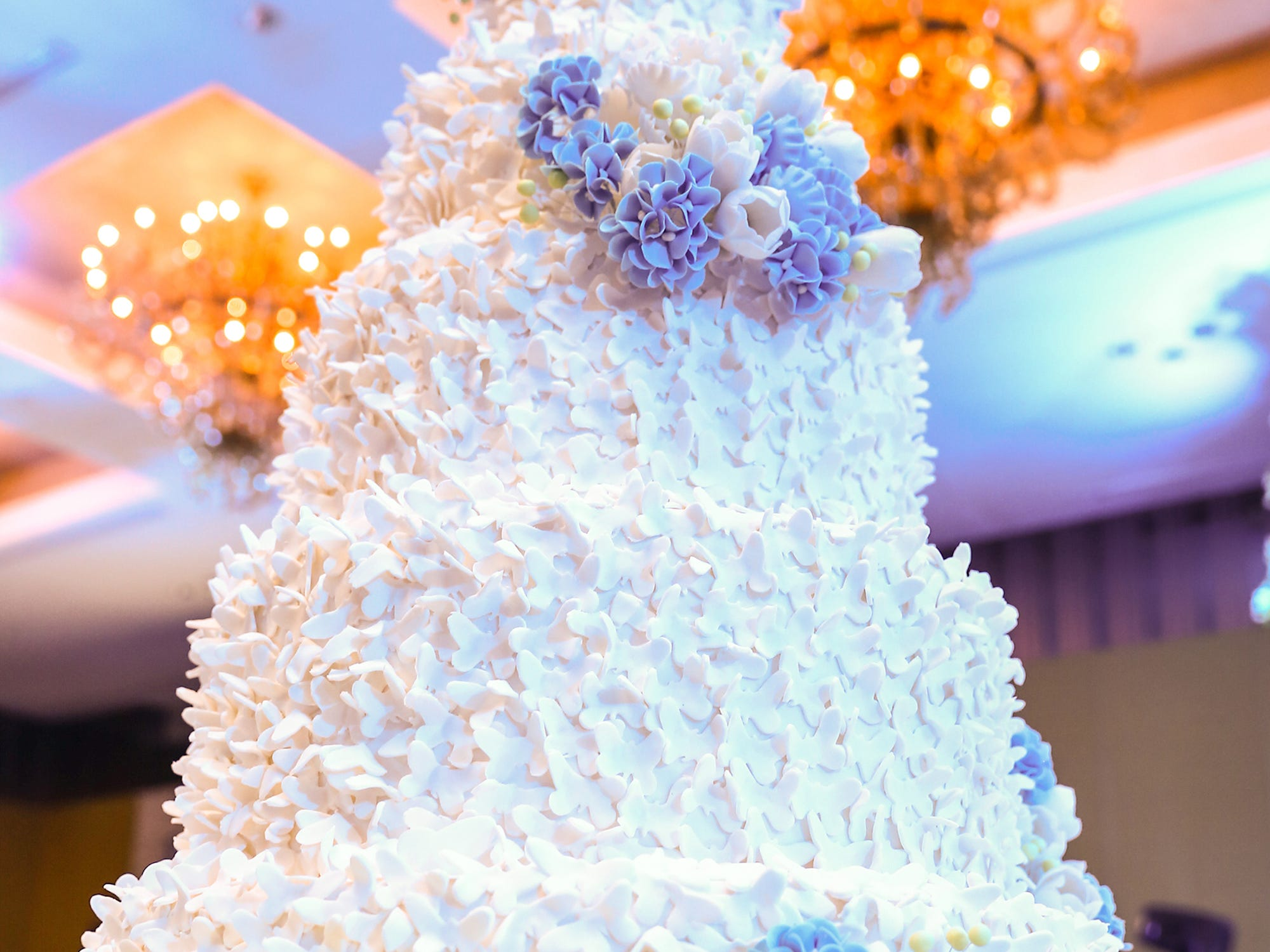 Crazy Fancy Wedding Cake Princess Castle