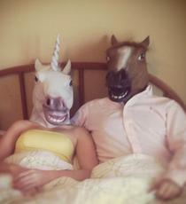 horseOP