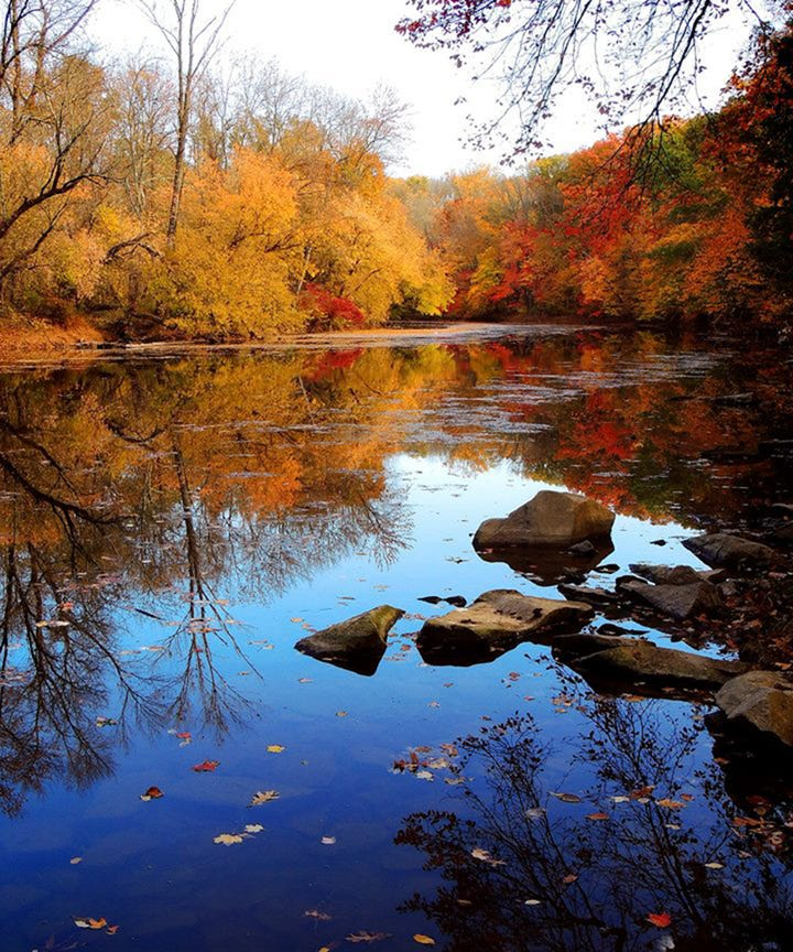 Best places to see fall leaves foliage outside nyc trip for Places to visit outside of new york city