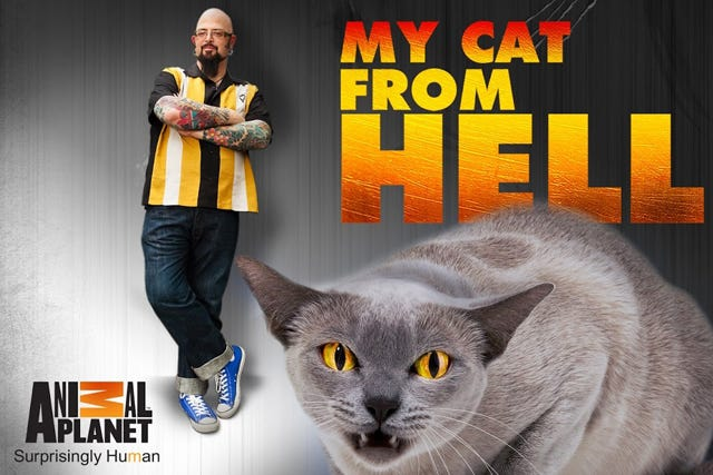 catfromhell