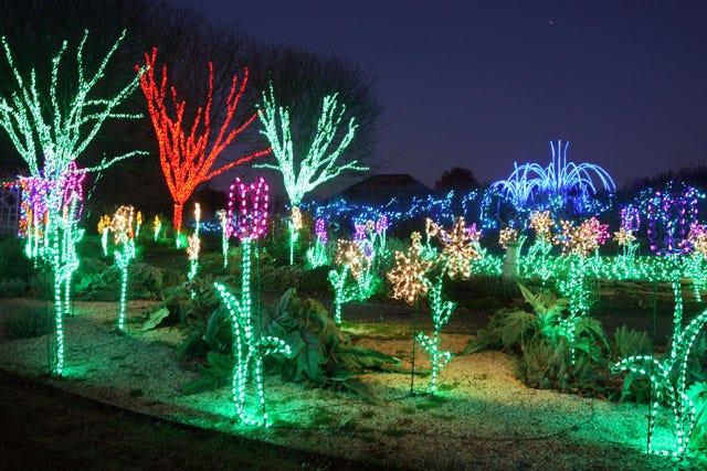 Holiday christmas lights washington dc for Botanical gardens dc christmas