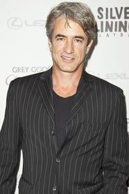 Silver Fox Gray Hairstyles For Men