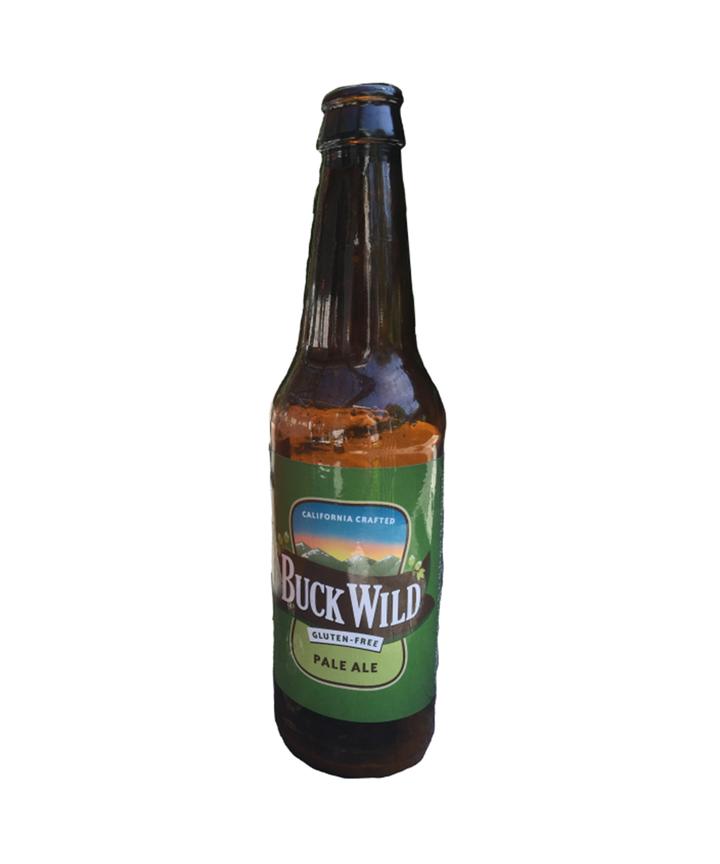 Best gluten free beers craft breweries beer brands 2017 for Best craft beer brands