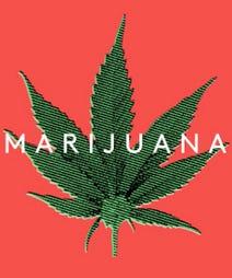 marijuanaOPENER