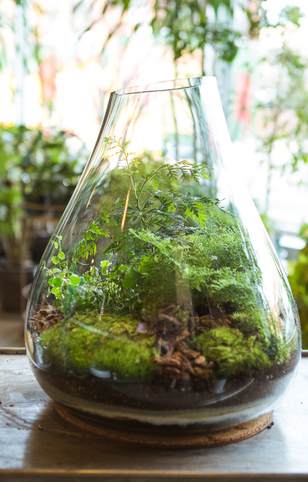 How To Create Dynamic Table Centerpieces With Terrariums