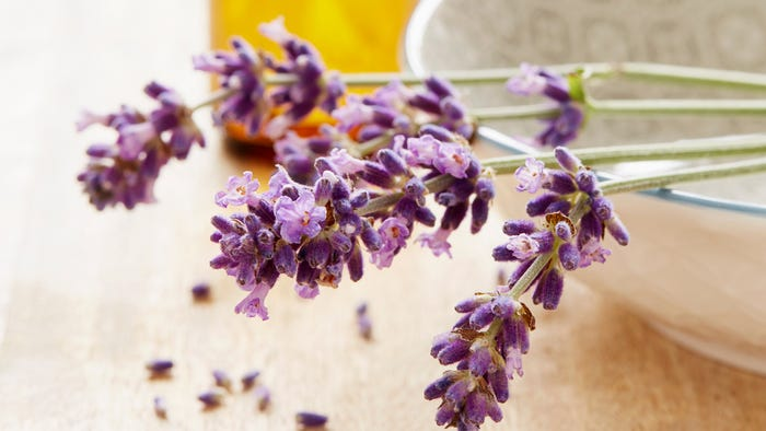 Why You Might Want To Stop Using Lavender Oil Skin Care