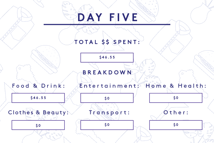 NYC College Student Budget Money Diary