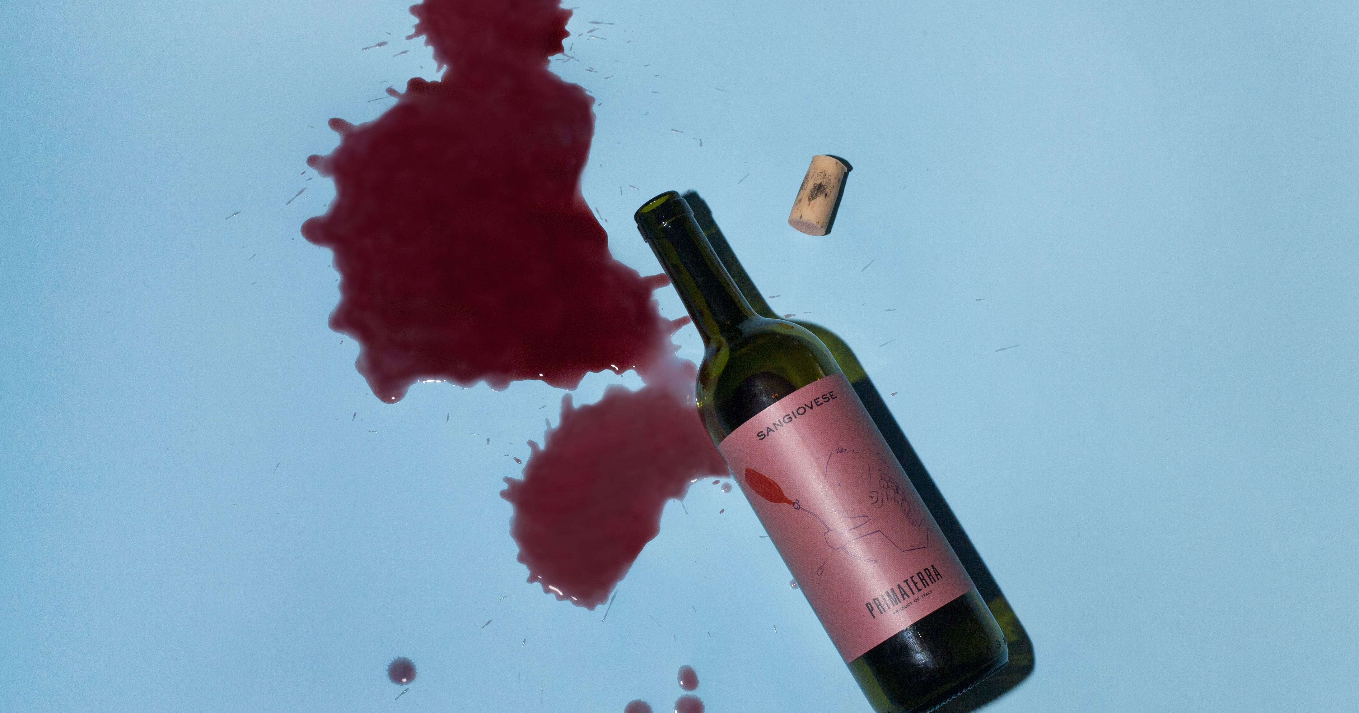 We Asked 9 Wine Experts To Pick Out Their Favorite Bottles For $12 Or Less