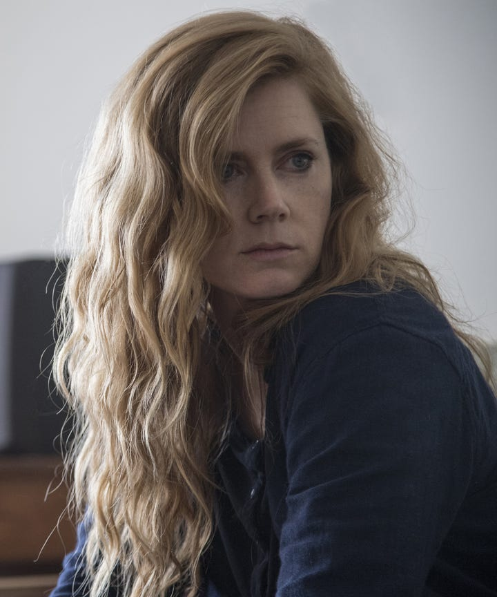 Sharp Objects Cast Guide To Main Characters