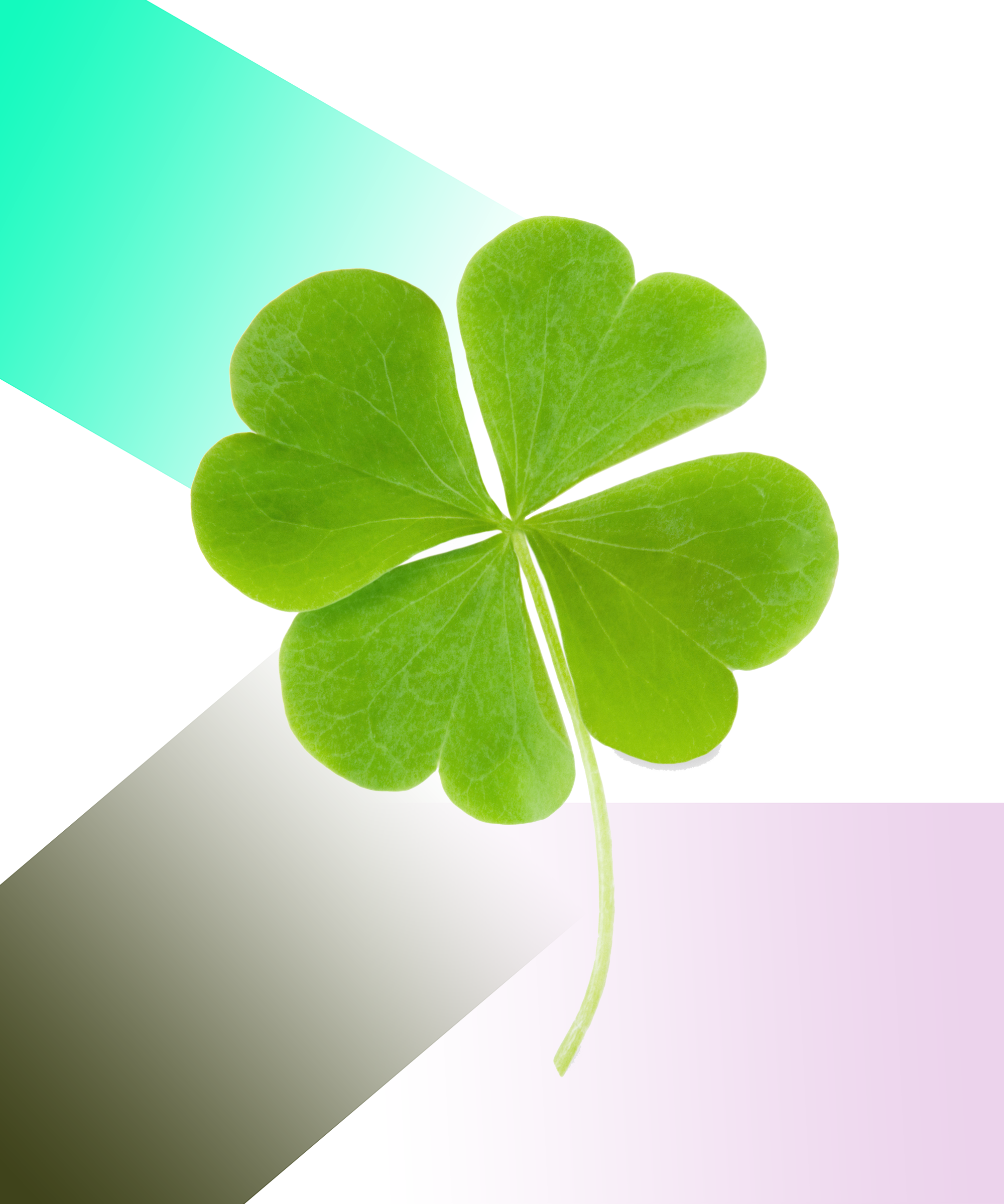 Four leaf clover folklore meaning st patrick day 2018 biocorpaavc Gallery
