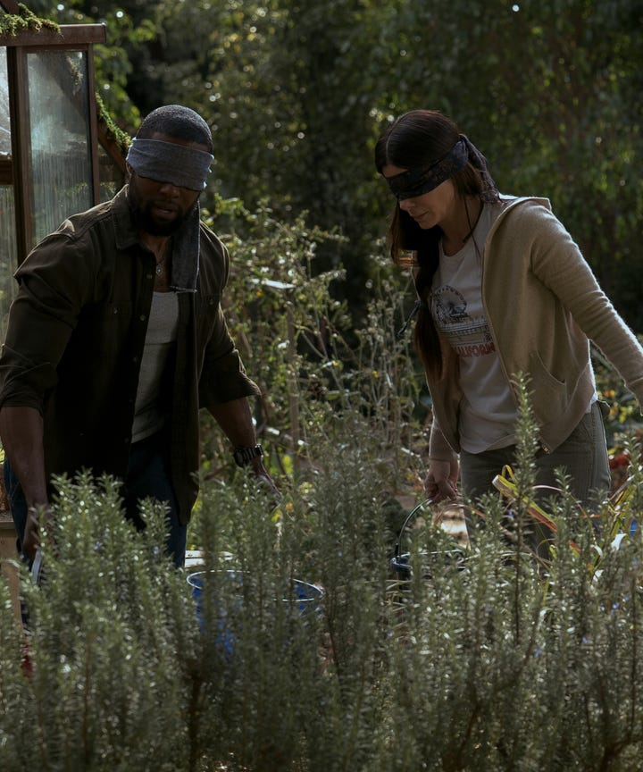 Bird Box Lingering Questions Plot Holes