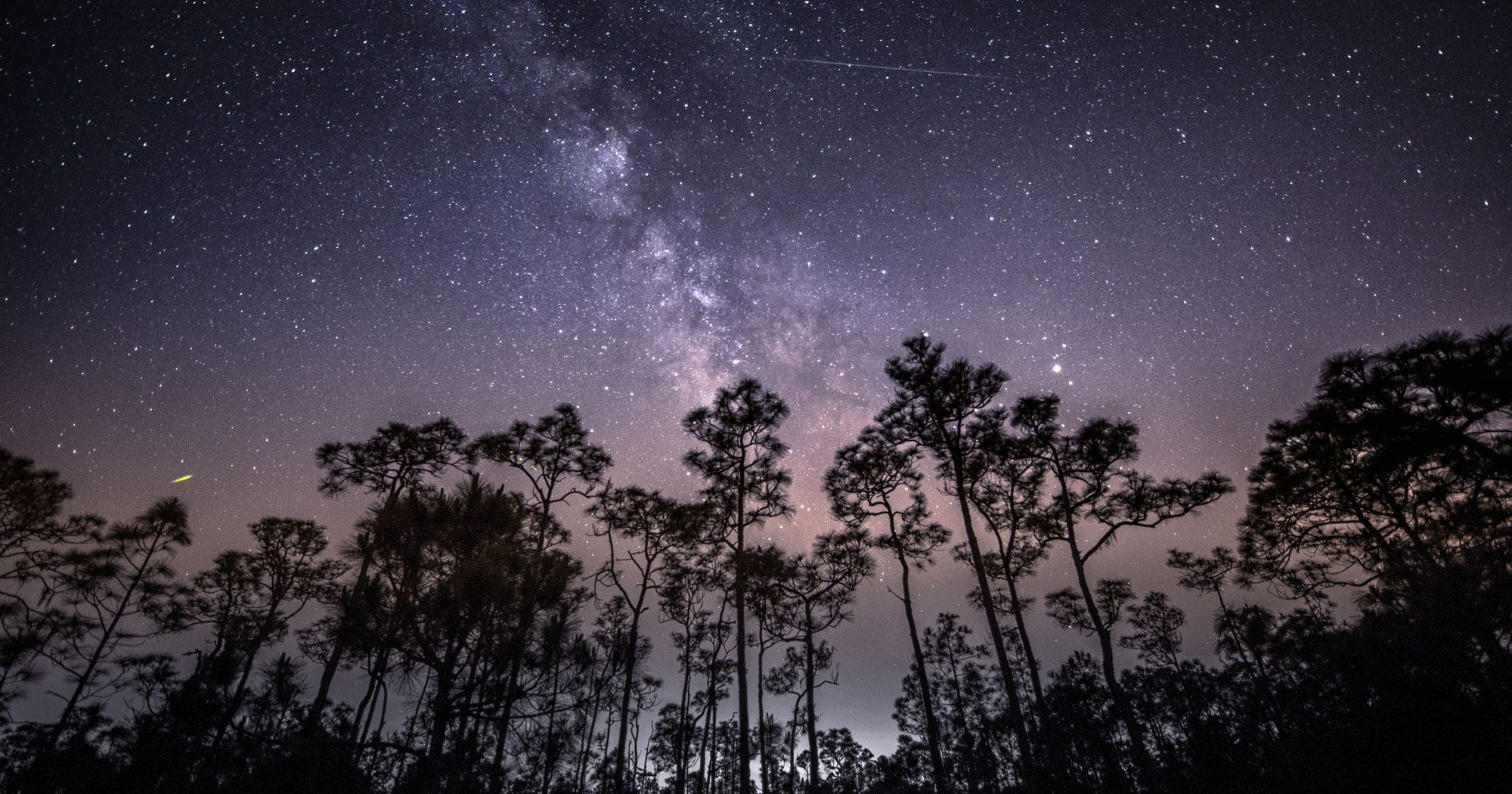How To Watch Tonight's Stunning Delta Aquarids Meteor Shower