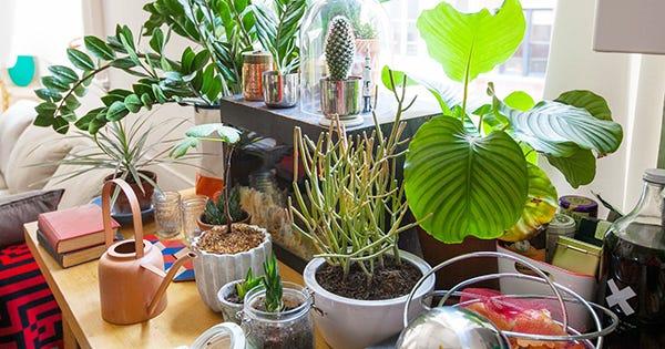50 Ideas To Make Your Tiny Apartment So Next Level