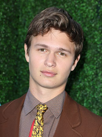 anselelgort-embed