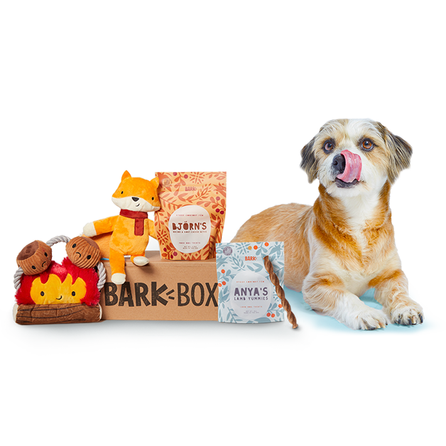 National Dog Day Deals 2019 Where To Get Free Treats